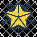 Star Badge Point Icon