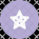 Star Ornament Ranking Icon