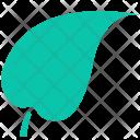 Star Leaf Eco Icon