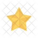Star Award Medal Icon