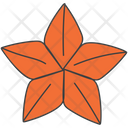 Star Anise Icon