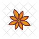Star Anise Dried Ingredients Icon