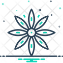 Star Anise Star Anise Icon