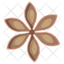 Star Anise Herbal Spices Icon