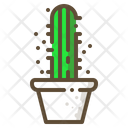 Star cactus Icon