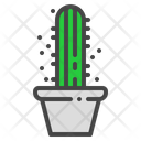 Star Cactus Succulent Icon