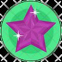 Gemstone Star Diamond Emerald Icon