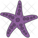 Sea Creature Starfish Sea Star Icon