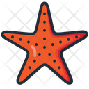 Seastar Starfish Sea Icon