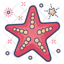 Starfish Mammal Fish Sea Animal Icon