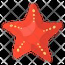 Starfish Sea Animal Sea Creature Icon