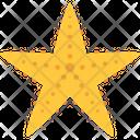 Star Fish Icon