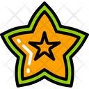 Star Fruit Food Eating Icon