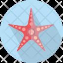 Starfish Asteroidea Brittle Icon