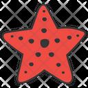 Starfish Seafood Echinoderm Icon