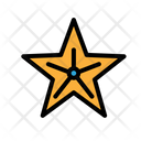 Starfish Fish Star Icon