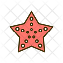 Starfish Fish Sea Creature Icon