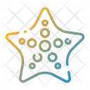 Starfish Star Fish Fish Icon