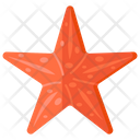 Starfish Sea Star Sea Creature Icon