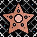 Star Fish Starfish Icon