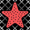 Starfish Sea Star Sea Creature Icon