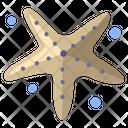 Starfish Fish Sea Fish Icon