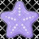 Sea Star Starfish Animal Icon