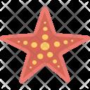 Starfish Sea Star Icon