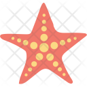 Starfish Sea Star Icon