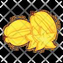 Starfruit Fruit Fresh Icon