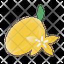 Starfruit Fruit Healthy Icon