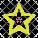 Starfruit Fruit Icon