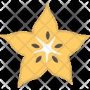 Starfruit Carambola Exotic Icon