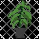 Stinging Nettle Plant Icon