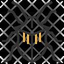 Stinkbug Insect Bug Icon