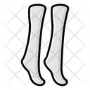 Stockings Socks Undershoe Socks Icon