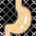 Stomach Icon