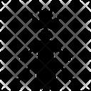 Stonefly Icon