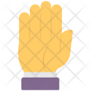 Stop Sign Palm Icon