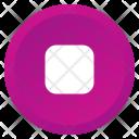Stop Multimedia Record Icon