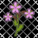 Stork flower Icon