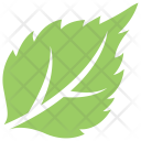 Strawberry Leaf Icon