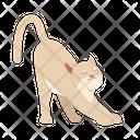 Stretching Cat Cat Kitten Icon