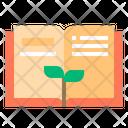 Study Growth Icon