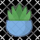 Nature Plant Pot Icon