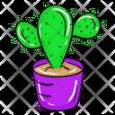 Succulent Plant Cactus Prickly Pear Icon