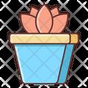 Succulent Plant Icon