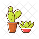 Succulents And Cacti Icon