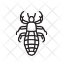 Sucking Louse Bug Insect Icon