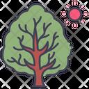 Summer Tree Nature Icon